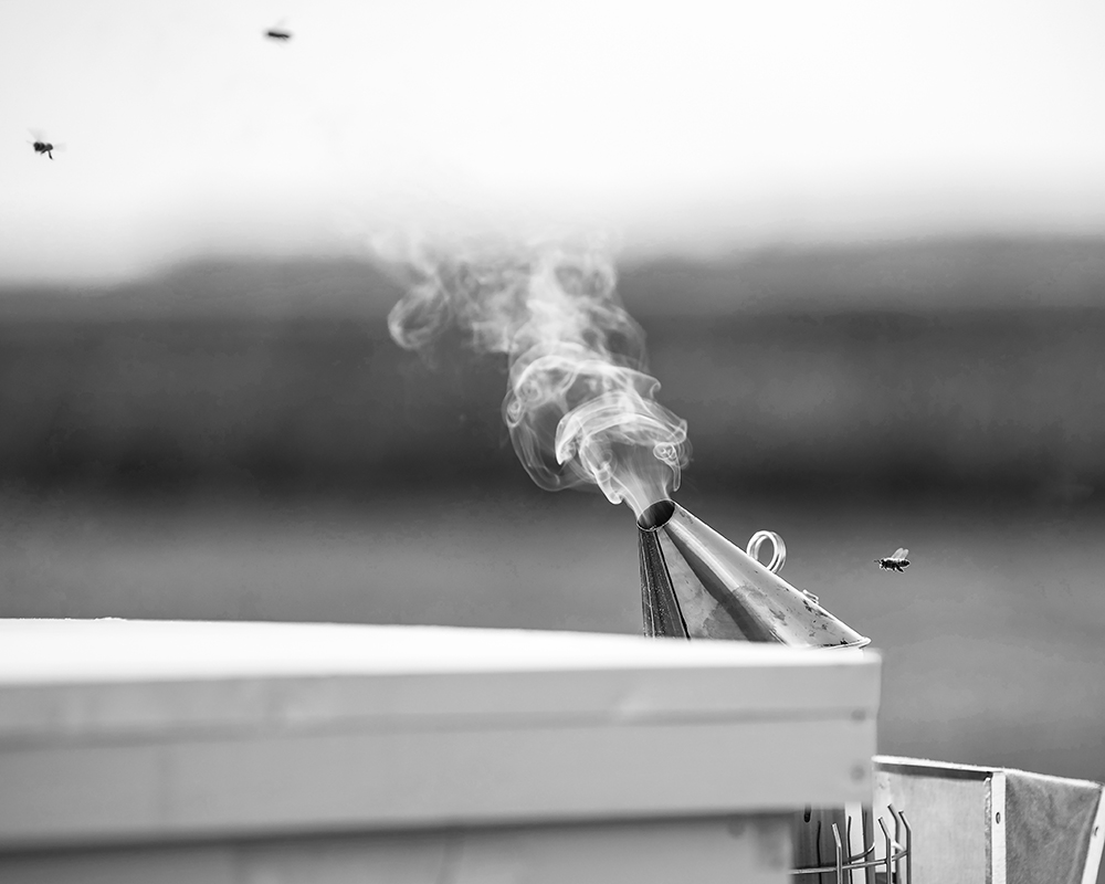 1st Place - Any Catagory B&W. A little smoke at Brun's Honey Farm